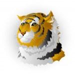 Head of a tiger — Stock Vector