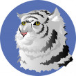 Head of White Tiger — Vector de stock