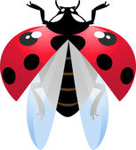 Flying ladybird — Vector de stock