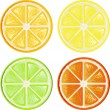 Vettoriale Stock : Citrus set
