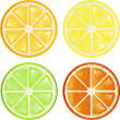 Citrus set — Stockvectorbeeld