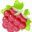 Raspberry on the white — Stock Vector
