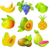 Set of exotic fruits — Stock Vector