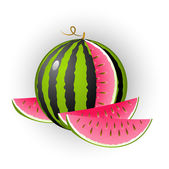 Watermelon — Stock Vector