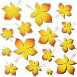 Chestnut autumn leaves — Stock Vector #1925619