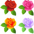 Roses — Stock Vector