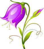 Bell-flower — Stock Vector