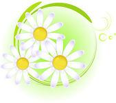 Elemento di disegno floreale — Vettoriale Stock