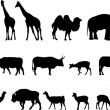 Various animals silhouettes — Stock Vector