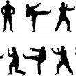 Martial arts silhouettes — Stock Vector