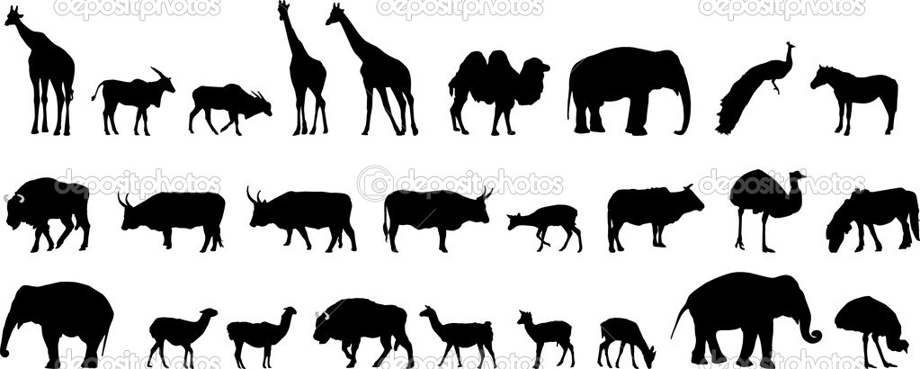 Various Animals Various Animals Silhouettes