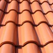 Red Roof With Red Tiles - Foto de Stock
