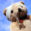 Sick Bear Close Up — Stock Photo