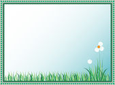 Daisy and green grass - vector — Stock Vector