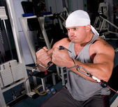 Bodybuilder training — Foto Stock