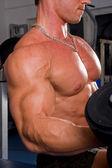 Bodybuilder training his bicep — Stock Photo