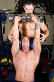 Bodybuilders training in the gym — Stock Photo
