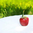 Strawberry on plate — Stock Photo