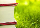 Books in grass — Stock Photo