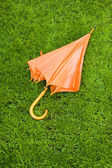 Umbrella on green grass — Stock Photo