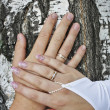 Hands of the newly-married couple - Stock Photo