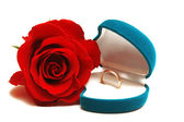 Wedding ring and rose — Stock Photo