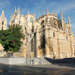Cathedral in Leon — Stock Photo