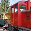 Narrow-Gauge Railway — Stock Photo