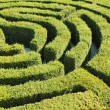Labyrinth — Stock Photo #2240461