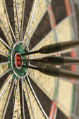Three Bulls Eye — Stock Photo