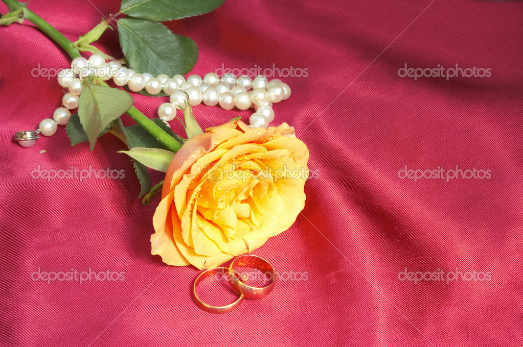  wedding rose with pearl necklace   Stock Photo #1835964