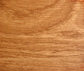 Texture of wood background — 图库照片