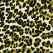 Royalty-Free Stock Photo: Leopard background