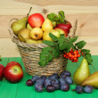 Stock Photo: Basket of fruit