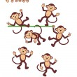 Stock Vector: Cartoon characters - monkey