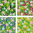Stock Vector: Four seamless floral patterns