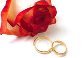 Rose and two wedding rings — Stock Photo