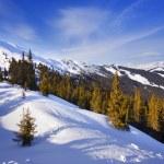 Ski slope. — Stock Photo #1830518