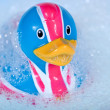 Stock Photo: rubber duck&quot
