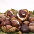 Stock Photo: Nice autumn chestnuts