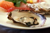 Delicious Oyster — Stock Photo