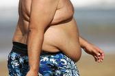 Fat belly — Stok fotoğraf