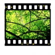 35mm Film frames — Stock Photo #1854820