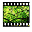 35mm Film frames - Stock Photo