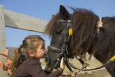 Little girl and pony — Stock Photo