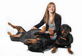 Teen and rottweilers — Stock Photo