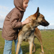 Stock Photo: Little girl and malinois