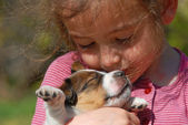 Little girl and puppy — Stock Photo