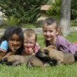 Stock Photo: Children and puppies