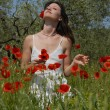 Young woman in poppies — Stock Photo